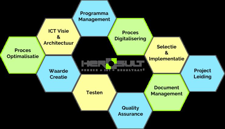 Proces, Procesoptimalisatie, Procesautomatisering, Documentbeheer, ICT visie, ICT architectuur, Selectie, Implementatie, Testen, Quality assurance, Kwaliteit, Waardecreatie, Programmamanagement, Programma