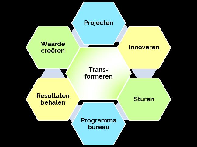 P Programmamanagement